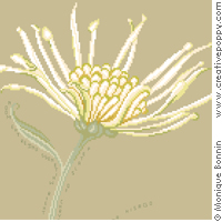Autumn Haïku: petals of Chrysanthemum - cross stitch pattern - by Monique Bonnin (zoom 1)