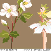 White Fairies collection: Christmas Rose Fairy