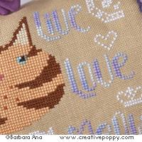 Live, Love, Meow!