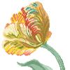 Counted cross stitch pattern, design by Monique Bonnin, flower series