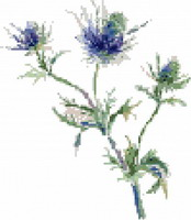 Romantic blue Thistles, counted cross stitch chart, designed by FeeFeedille