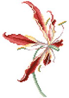 Gloriosa - cross stitch pattern - by Monique Bonnin