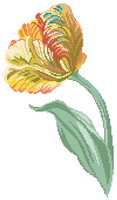 Parrot Tulip counted cross stitch pattern designed by Monique Bonnin
